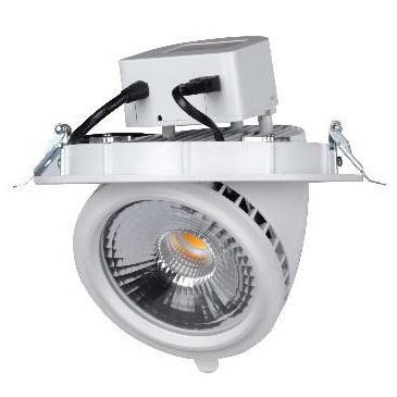 20W/30W LED Scoop Downlight